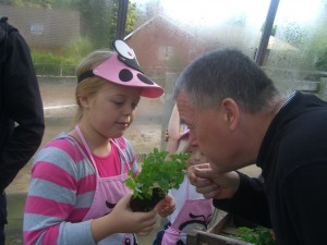 A young girl and her dad planting herbs