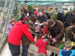 FAMILIES PLANTING